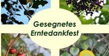 Tradition: Erntedank / Alles was mit dem Erntedankfest zusammenhängt.   --   All things related to giving Thanks for the harvest.