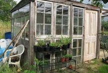orangeri/växthus