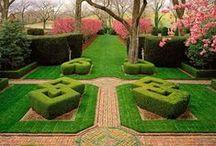 ogród / to co kocham od wiosny do jesieni...