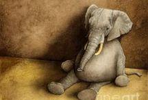 Elephants - sloni