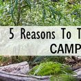 Camping Tips / Ideas and tips for everyone that enjoys camping and the beach! #CampersCove #Campground #DiscoverON