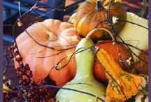 My Favorite Thanksgiving Ideas / by Cindy Dunn