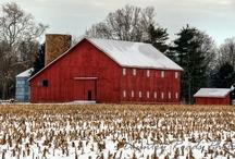 Down on the Farm / by Dawn Pardinas