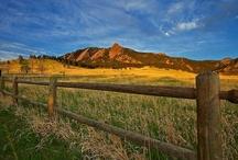 Western Dreams / by Kelly Hinde