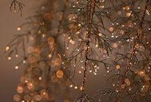winter twinkels