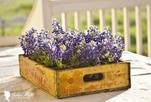 **DIY: Pallets & Crates** / Welcome to Pallets & Crates!! Pin your favorite creations only..no spam or non-relevant items please!!! Thanks for joining!!!