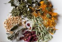 **Natural: Herbal** / Welcome to Herbal Remedies!! Pin your favorite herbal remedy or medicine!! No spam or non-relevant items please!! Thanks for joining!!!
