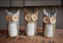 owls - sowy
