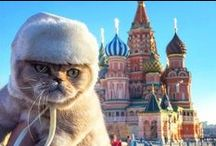Entertainment / Entertainment from Slavic world!