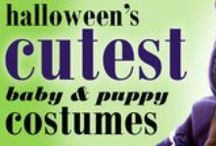 Halloween Costumes & Treats / From pups to babies to even your cars - dress up this Halloween!