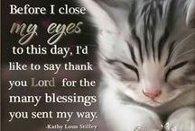 **Blessings For All** / Welcome to Blessings!!  Pin your favorite blessing quotes or verses!!  Please, no spam or inappropriate content!!  Thanks for joining, have a beautiful, blessed day!! / by MomBHM