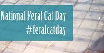 Caring for Community Cats / Caring for feral and community cats. Trap-Neuter-Return (TNR), Return-to-Field (RTF)