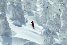ICE, ARCTIC, SNOW