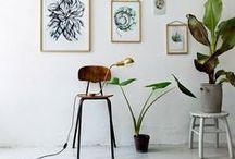 GO GREEN / Indoor gardening