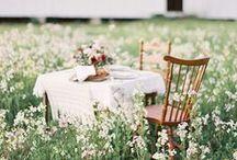| garden | / ...green green green... and flowers...