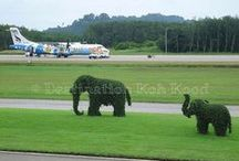 Trat Airport (TDX) / Impression of Trat Airport operated by Bangkok Airways (Thailand)