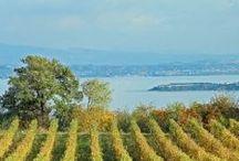 Lake Garda / Lake Garda - Italy