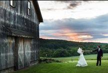 Destination Wedding Ideas / www.lilyandtherose.com