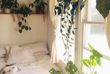 Minimalist apartment / Clean , pristine and lots of plants