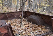 """Compost -- Turn Over an Old Leaf / Yard waste composting's simple and nearly foolproof.  The most common mistake is to omit breaking up chunky greenery, forgetting to turn the pile, or having too many """"greens"""" or """"browns.""""  Even so, these missteps merely slow the process.  Nature always progresses at any pace."""