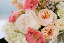 Wedding Inspiration / by Megan Holmes