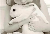 Love it ♥ Rabbit