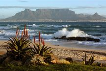 South Afrika / by Erica Forrester