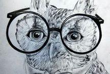 Whooo loves owls?