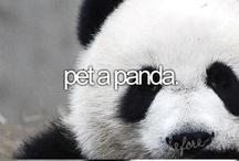 Before I Die :)