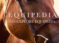 EQUIPEDIA - Go Explore!