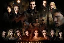 Twilight Posters / by Debra Davis