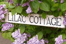 English Cottages and Pubs / Everything cottage and pubs