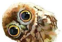 Bird of prey / I love birds of prey