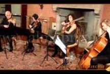 SC String Quartet