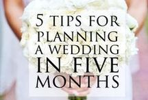 Wedding Tips / Need a few great ideas for the big day? We're collecting the best wedding tips and tricks here for you!