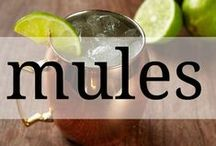 Mules / Switch up this classic cocktail with one of these sip-worthy variations.