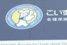 市岡 / こいずみ鍼灸整骨院 市岡のギャラリーです。 http://shin9.com/branch/ichioka