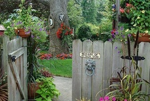 Gardening Ideas & Outdoor / by Vicky Ferguson