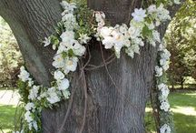 Woodland Weddings / Ideas for the Holwell Temple, Castle Hill, Devon