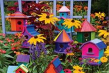 Birdhouses & Bird Baths / by Rebecca Jones-Gebers