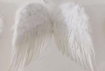 Angels / by Gigi