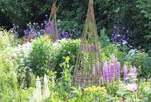 Simply Garden