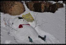bonhommes de neiges  / Snowmans