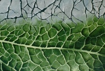 New nature - paintings / There are thousands shapes of nature, I offer you mine.
