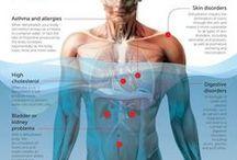 Body + Health