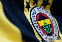 Fenerbahçe / Fenerbahçe