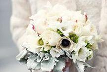 Winter Bouquet / Winter Bouquet