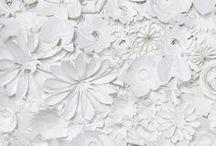 WHITE. / white