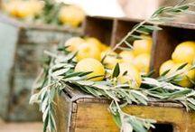 Mediterranean Wedding - Olive & Lemon