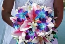Weddings / by Amy Johnson